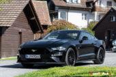 Ford : une Mustang 5.0 GT V8 encore plus séduisante