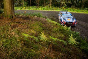 WRC – Platz 5 in Wales: Hyundai-Pilot Neuville verteidigt WM-Führung